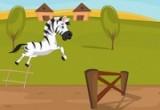 لعبة سباق الحصان زيبرا